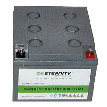 ETERNITY AGM-Blockbatterie A04 12 021 /12 V 21 Ah...